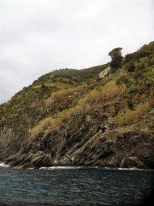 Cheo Vernazza Cinque Terre
