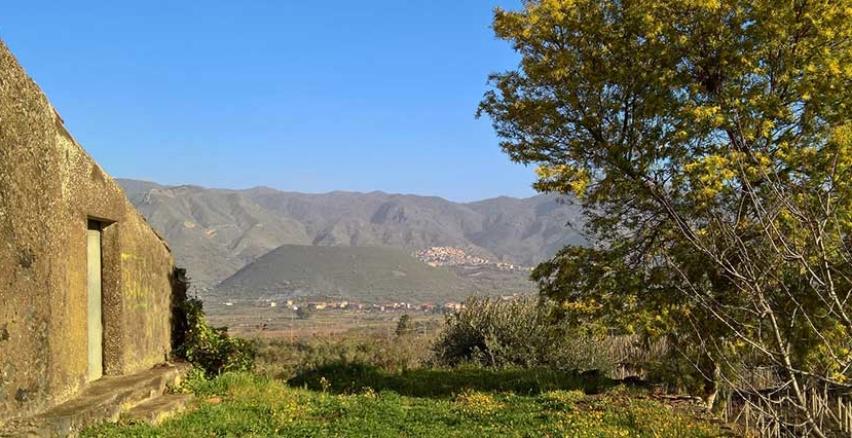 Etna reportage - la viticoltura eroica siciliana