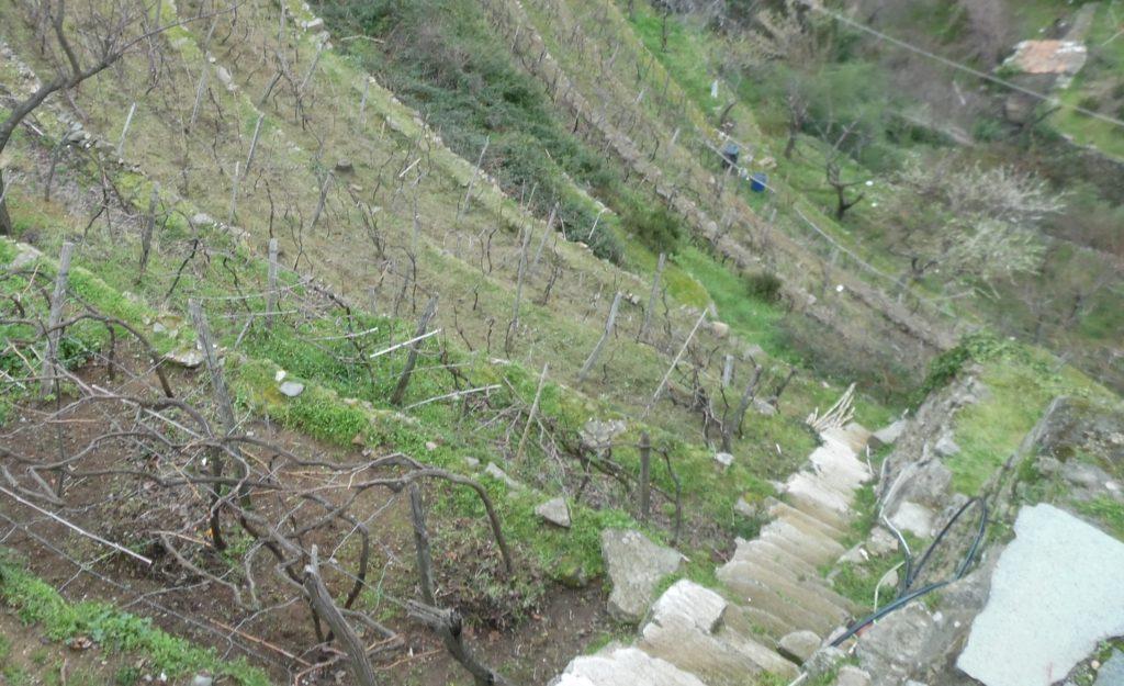 La collina di Bargòn